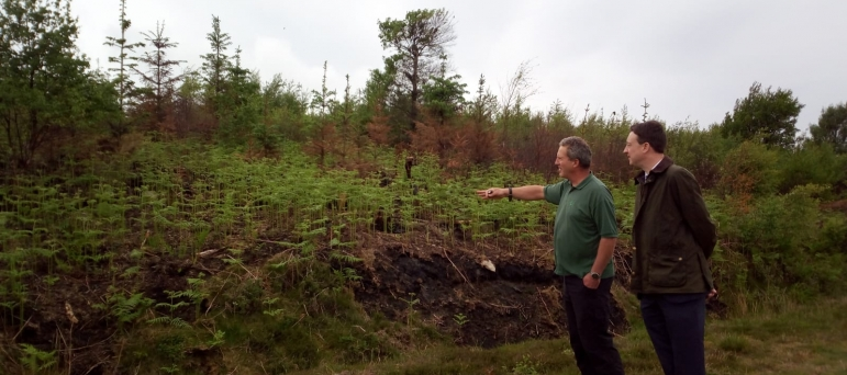 Guisborough Forest - learning about fire damage